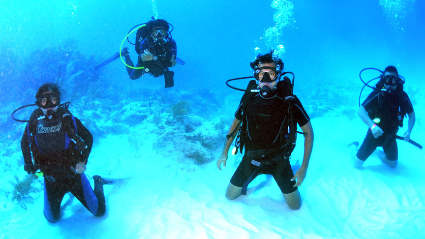 Picture of Open Water Diver
