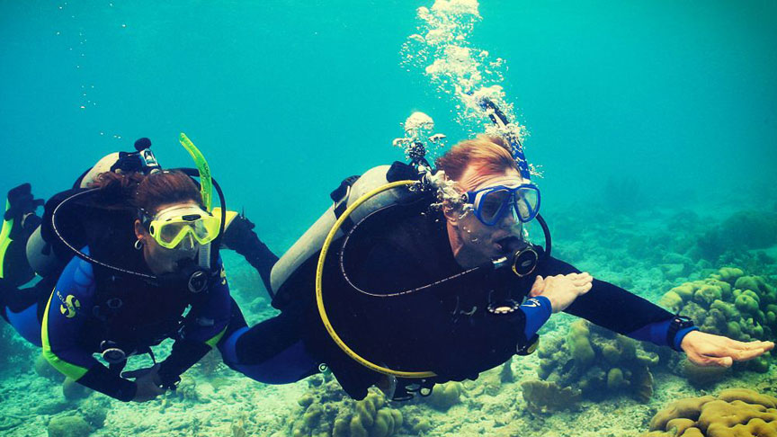 Picture of Divemaster