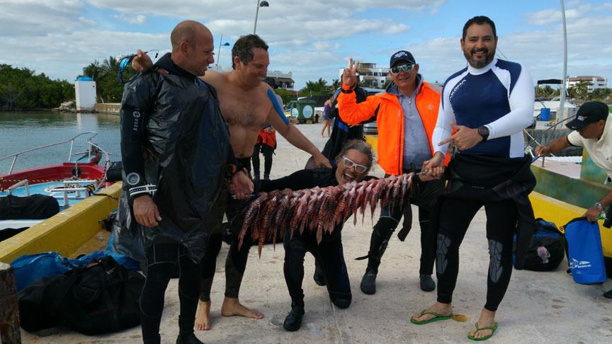 capturas tras una campaña de control de plaga de pez leon