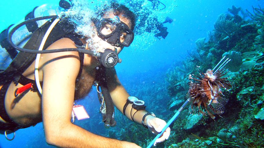 buceador pescado la especie invasora de pez leon