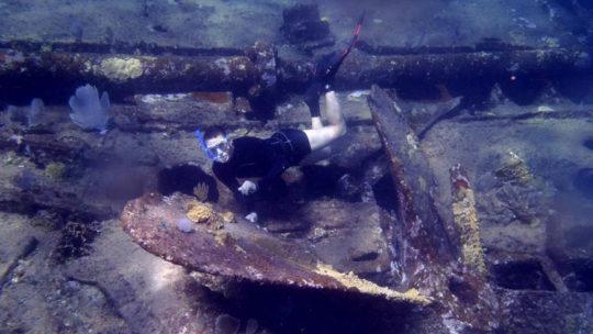 snorkel-barco-chinchorro